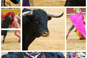 Collage about bullfighting.