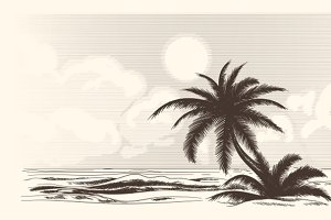 Vintage palm tree sketch