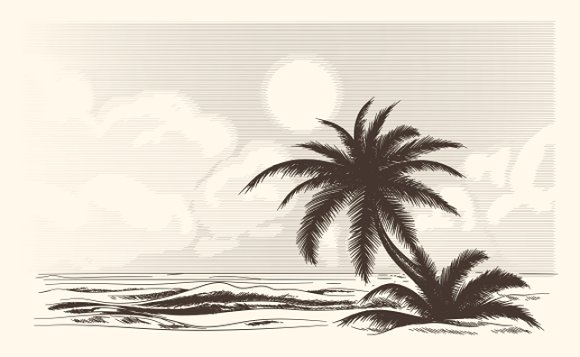 Vintage palm tree sketch graphics creative market thecheapjerseys Gallery