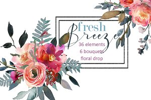 Peach Peonies Watercolor Clipart