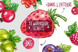 11 watercolor berries + bonus
