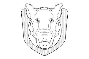 Hunting trophy. Boar head. Vector