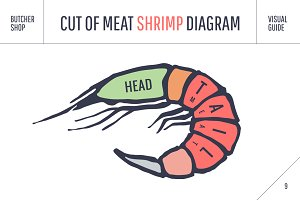 Shrimp. Cut of meat set