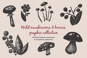 Mushrooms and Berries collection