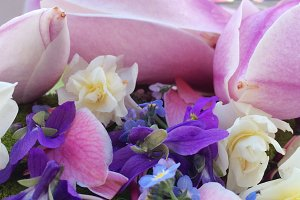 Styled stock photo - spring flowers