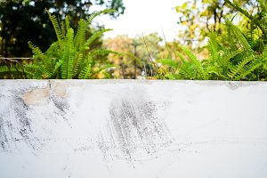 abstract of white wall concrete