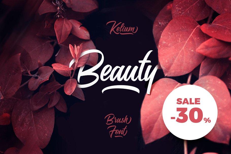 5c47cf376 Kelium ~ Script Fonts ~ Creative Market