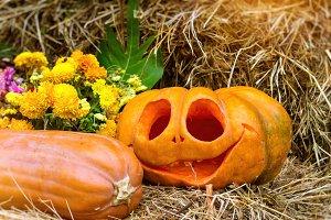 Pumpkin and zucchini for Halloween