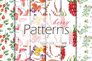 berry Patterns 12, vol. 1