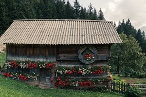 Traditional cottage with flowers