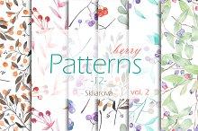 berry Patterns 12, vol. 2