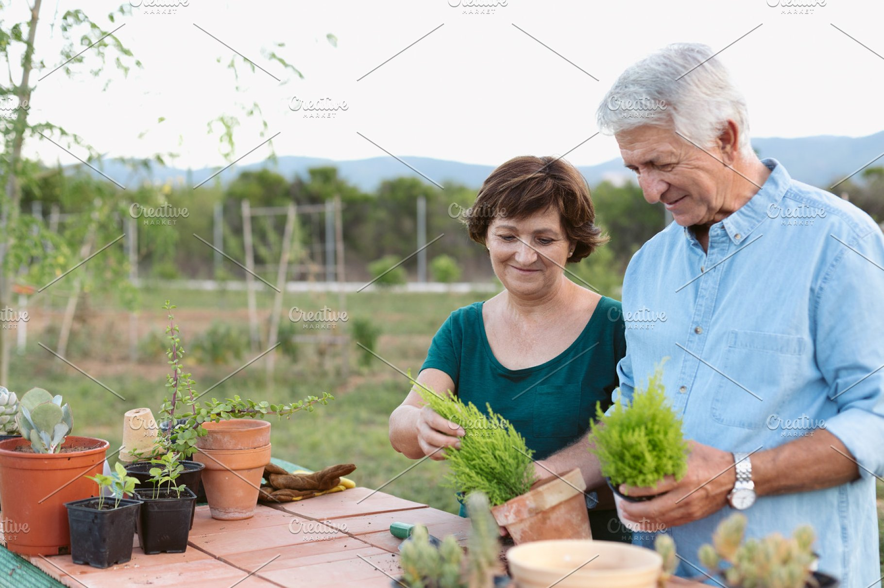 Senior couple replanting some plants ~ People Photos