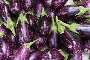 Aubergine background