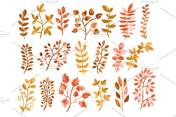 Hand Drawn Branches Set. Autumn in Illustrations - product preview 1