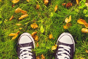sneakers and leaves on grass