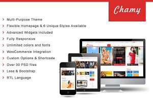 SW Chamy - Responsive WordPress Them