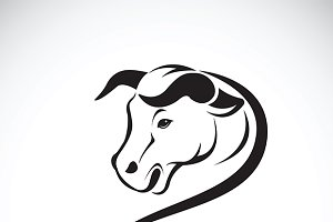 Vector of a bull head.