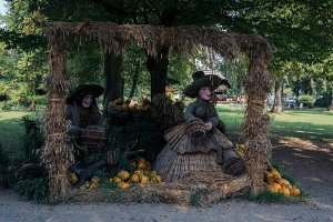 Witches and pumpkins for halloween