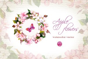 Apple flowers set. Watercolor vector