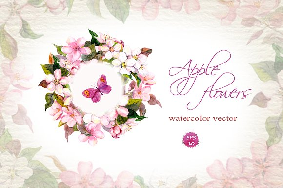 Apple flowers set. Watercolor vector - Illustrations
