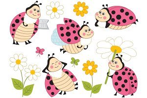 Vector Ladybugs - Ladybirds Set