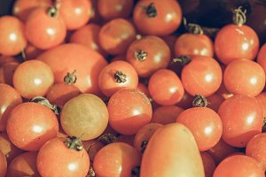 Tomatoes picture vintage desaturated