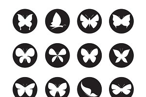 Vector group of butterflies.