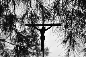 Crucifix Tree Silhouette