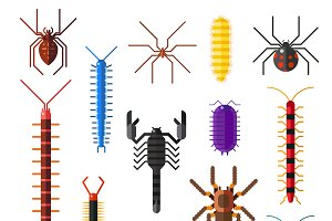 Dangerous insects animals vector