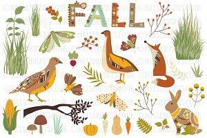 Nature Autumn Fall