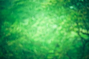 blur raining background