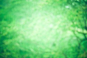 blur raining background