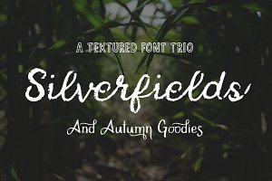 Silverfields - Font Trio + More
