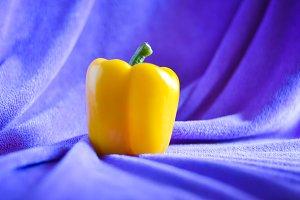 yellow sweet pepper