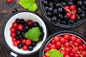 Red and black currants