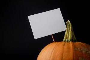 Halloween pumpkin with blank sign