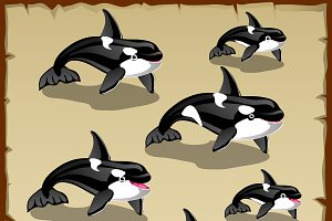 Set of cute killer whales