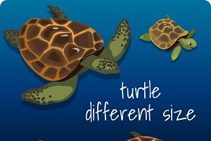 Group of turtles in a cartoon style
