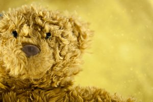Close-up of teddy bear with rich gold background (Selective focus)