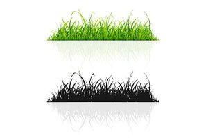 Green Grass and Black Silhouette