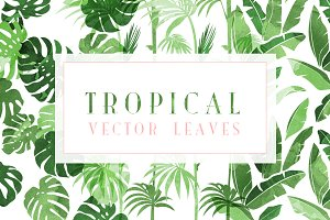 SUMMER vector leaves
