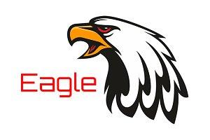 Eagle harsh crying