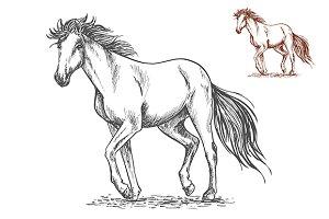 Running white horse