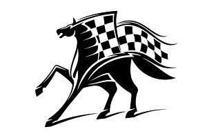 Black horse with checkered flag