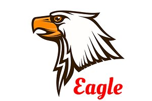 Hawk or eagle graphic mascot