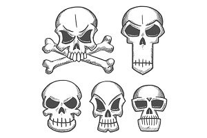 Skulls and craniums with crossbones