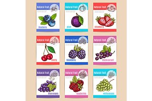 Natural fruits and berries banners