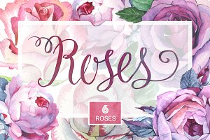 Watercolor roses PNG romantic set