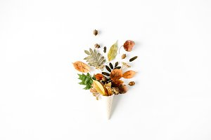 Cone with autumn leaves