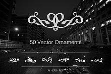 50 Vector Ornaments